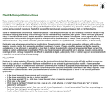 Plant/Arthropod Interactions