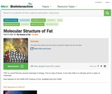Molecular Structure of Fat