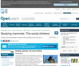 Studying Mammals: the Social Climbers