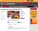 Developmental Cognitive Neuroscience, Spring 2012