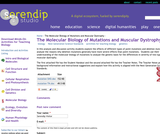 The Molecular Biology of Mutations and Muscular Dystrophy
