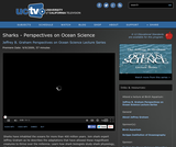 Perspectives on Ocean Science: Sharks
