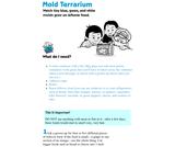 Mold Terrarium