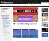 Medicine Games: Split Brain Experiment