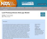 Leaf Photosynthesis NetLogo Model