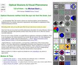 48 Optical Illusions & Visual Phenomena