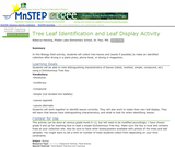 Tree Leaf Identification and Leaf Display Activity