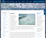 All About Sea Ice