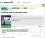 Virtual Bacterial Identification Lab
