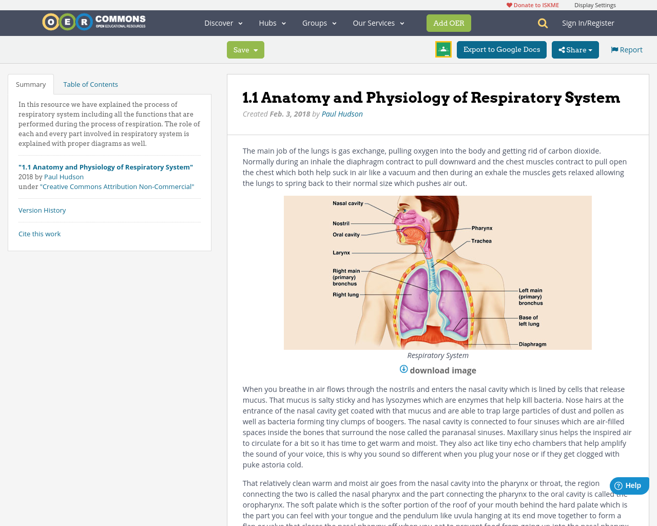 1.1 Anatomy and Physiology of Respiratory System | OER Commons
