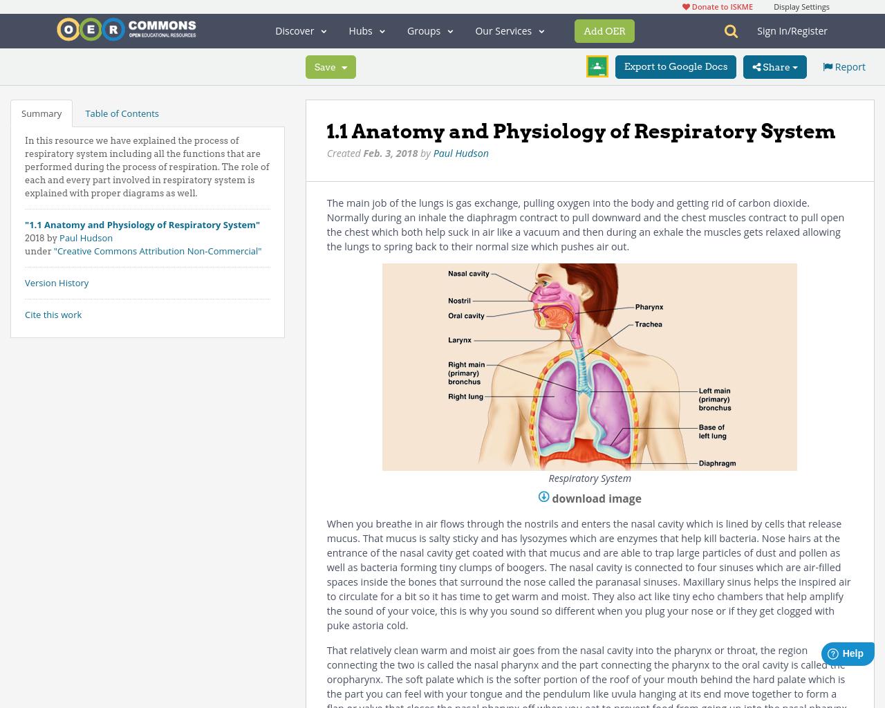 Atemberaubend Respiratory System Anatomy And Physiology ...